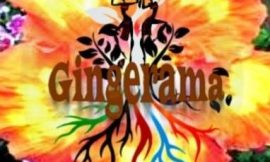 Gingerama activities to get underway at new facility