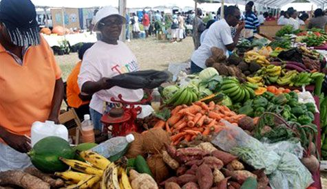 Nevisian Public to expect more for Agriculture Open Day 2020 as Director says they are on target