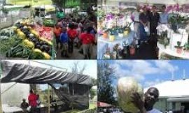 Agriculture Open Day slated for March 26th and 27th 2020