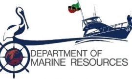 CoVID-19: Department of Maritime Affairs issues statement urging boat operators to take steps
