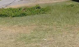 63-year-old man found dead here on Nevis