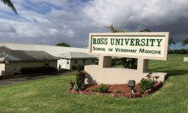 "Ross students discharged and ""free to integrate into society"""