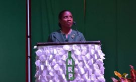 New Leader of NRP selected at Party's 2020 Convention