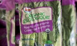 Premier of Nevis reminds Public to buy and eat Local in response to recalled foreign lettuce infected with E-Coli