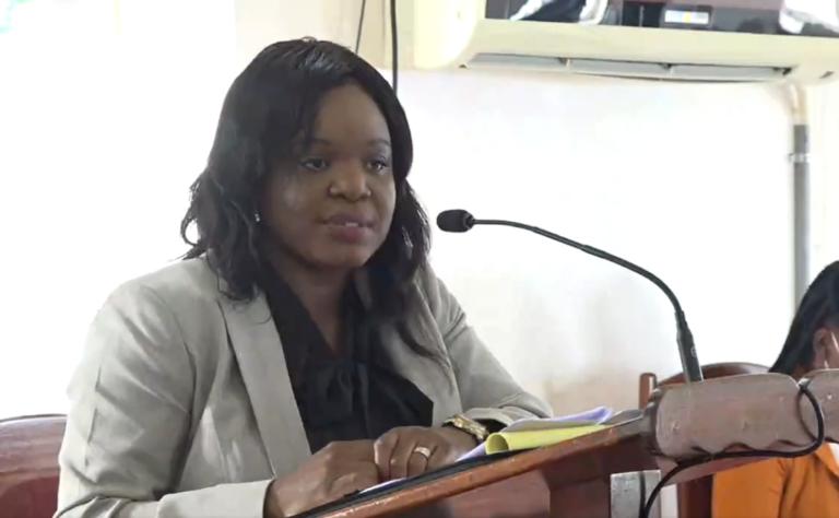Lone Member of the Opposition speaks at 2021 Budget Debate