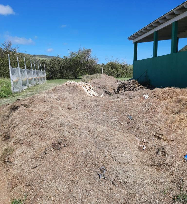 You are currently viewing Local Organic Compost made available to TDC