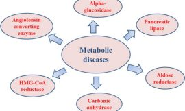 ICDF & Ministry of Health commences four-year program concentrating on metabolic diseases